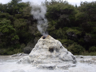 The Lady Knox Geyser about to explode.