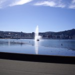 The fountain at Oriental Beach, in Wellington.