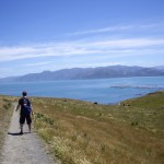 Scott walking on the Kaikoura Peninsula Walkway