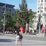 The token Christmas tree in Christchurch's cathedral square