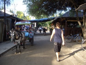 The streets of Gili Travagan