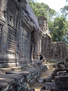 A tree trunk hangs over the walls of Ta Prohm