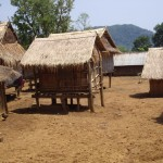 The Khmu village - all houses are built on stilts, as opposed to Hmong villages which are all built on land.