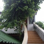 Our little house at Pavee, with our own private staircase